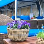 bar patio space