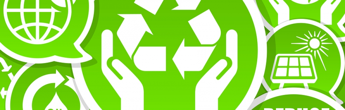Go Green! 10 Tips to Help Your Restaurant Become More Eco-Friendly