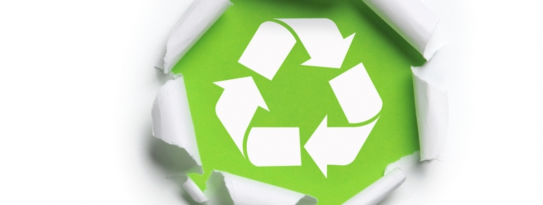 5 Ways Going Green is Good for Business
