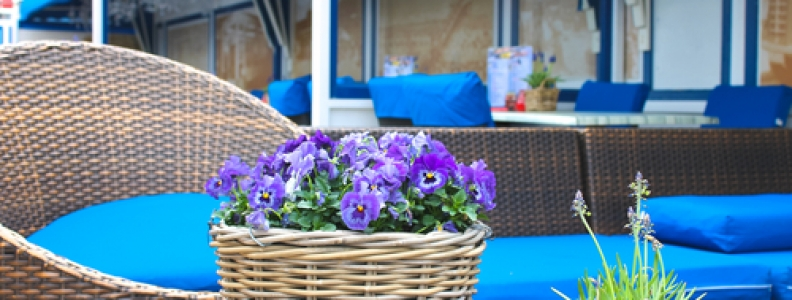 Spring Has Sprung: Tips for Adding Appeal to Your Restaurant's Patio Space